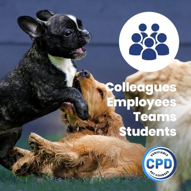 Running Successful Puppy Socialisation Events Webinar